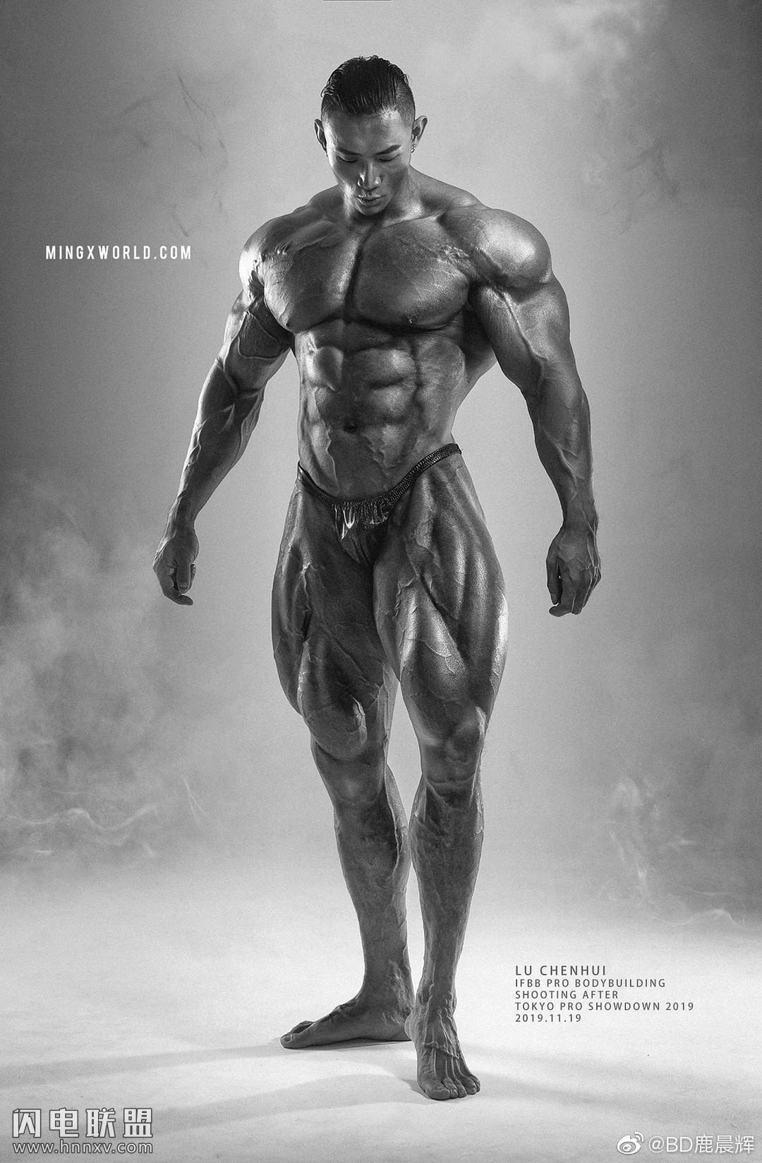 性感国产健美肌肉型男鹿晨辉图片