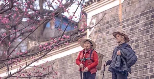 2019年度必看华语电影,逃不出这份名单