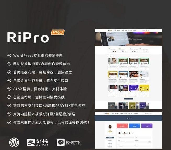 WordPress主题RiProV4.9.0研究学习免授权无限制版